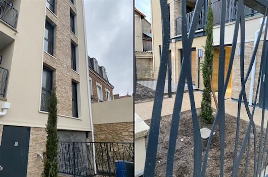 Birdy Promotion, programme immobilier le Perreux sur Marne